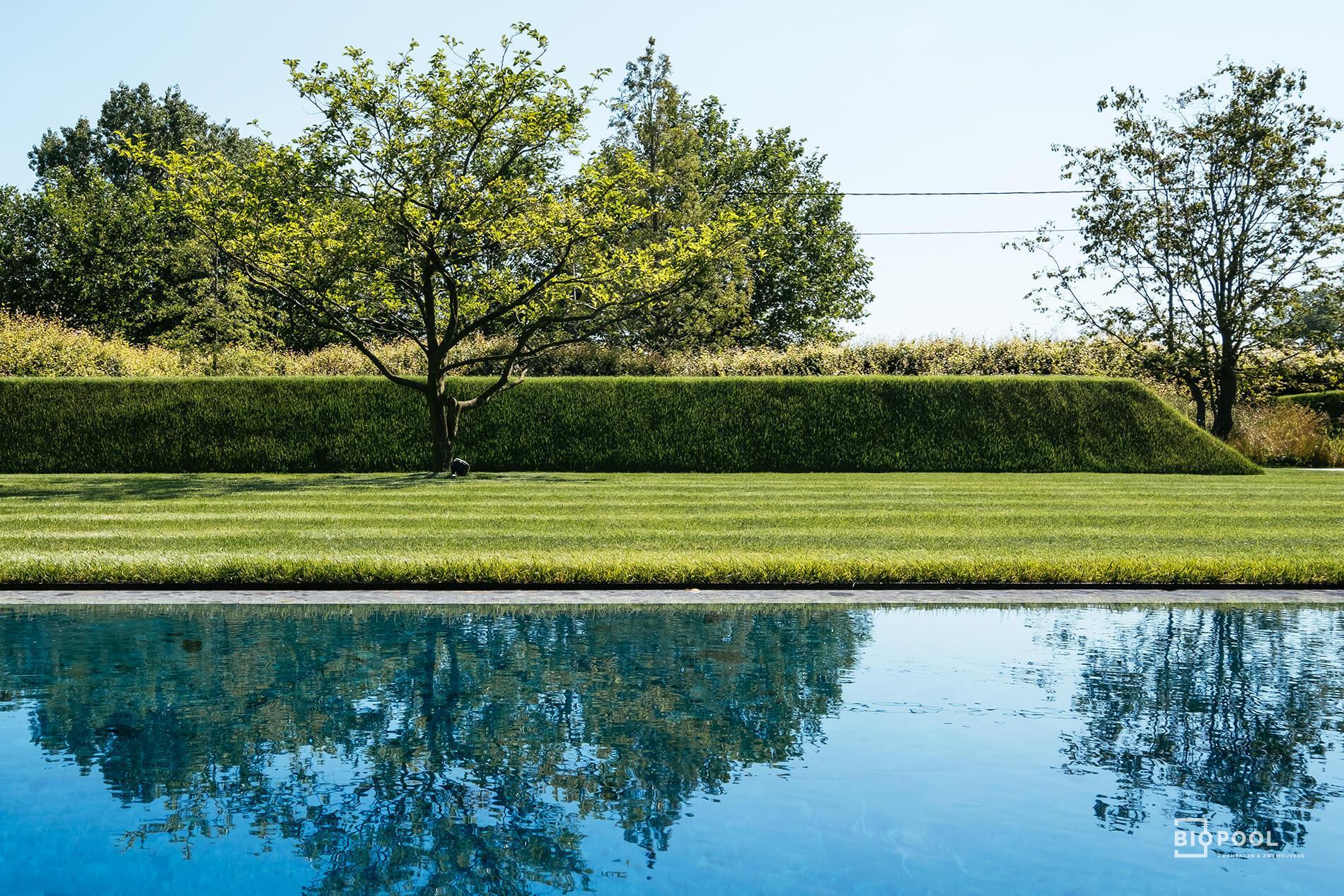 Afbeelding project Bouwkundig / Riverstone Pool / Tegelzwembad