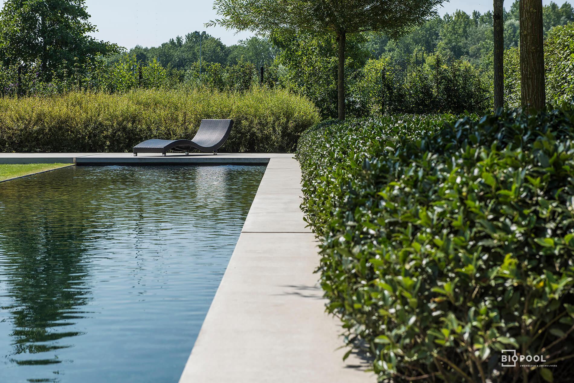 Afbeelding project PE | Top Line | klassiek zwemvijver | gras & beton rand