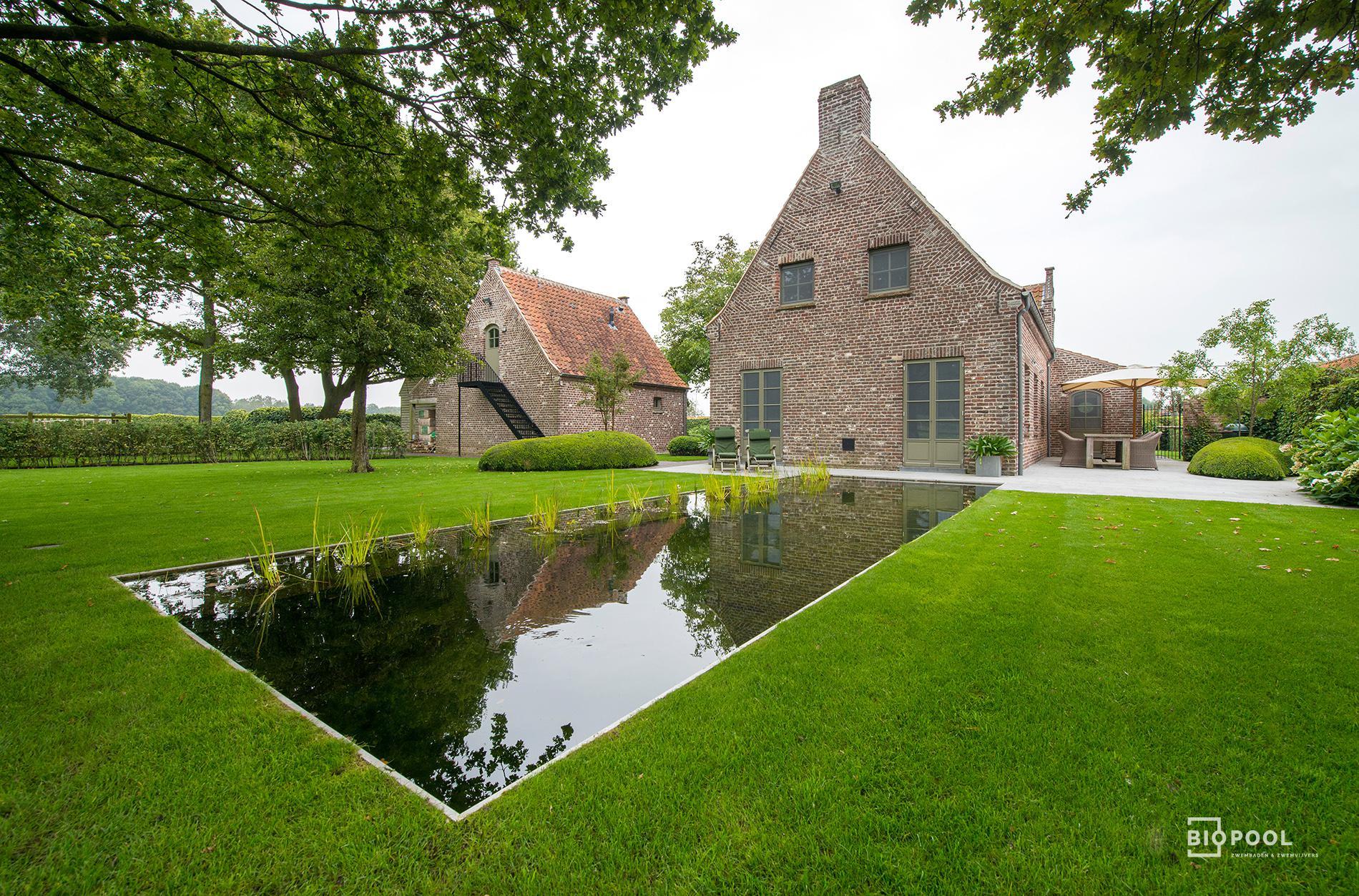 Afbeelding project Grasrand zwemvijver die een perfecte spiegel in de tuin vormt