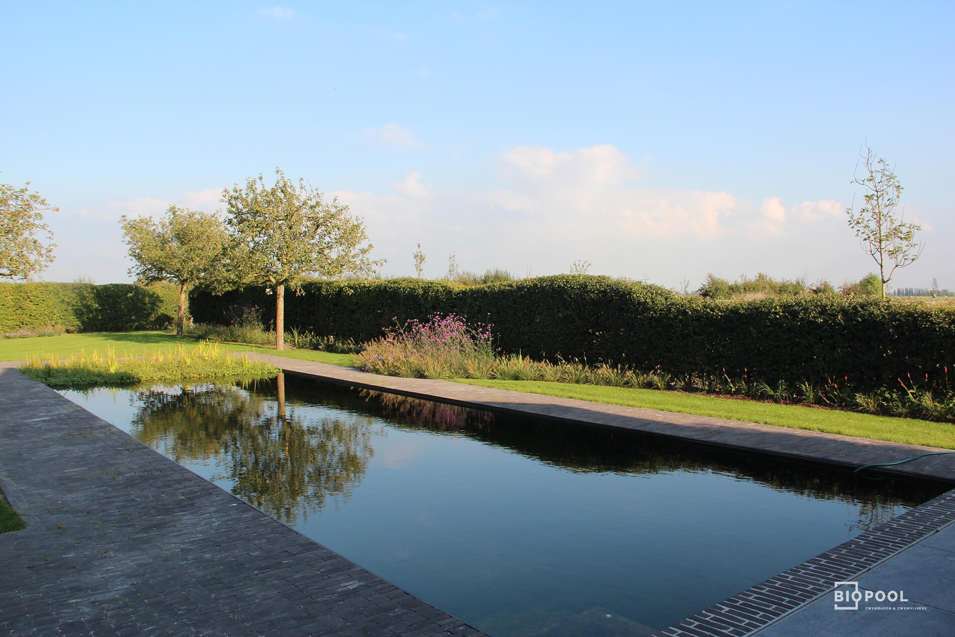 Afbeelding project Zwemvijver in landschappelijke tuin te Diksmuide