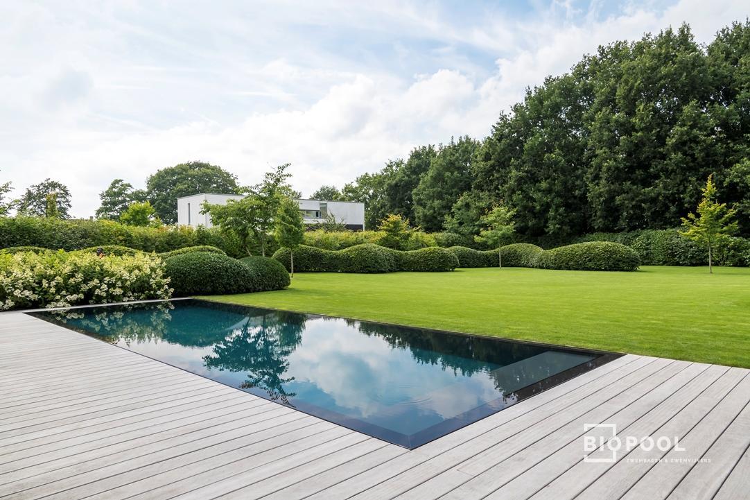 Afbeelding project PPC | Spiegel overloop zwembad | Gras – Houten rand | Hertsberge